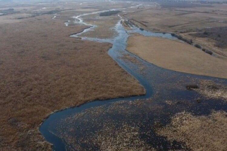 Річка Стохід стала чистіша