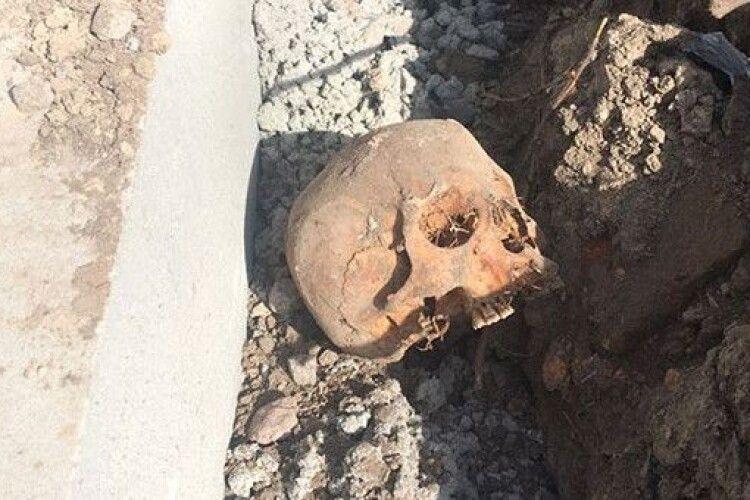 На Волині копали траншею, а знайшли… два черепи