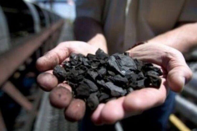 Волинським шахтарям частково виплатять заборговану зарплату