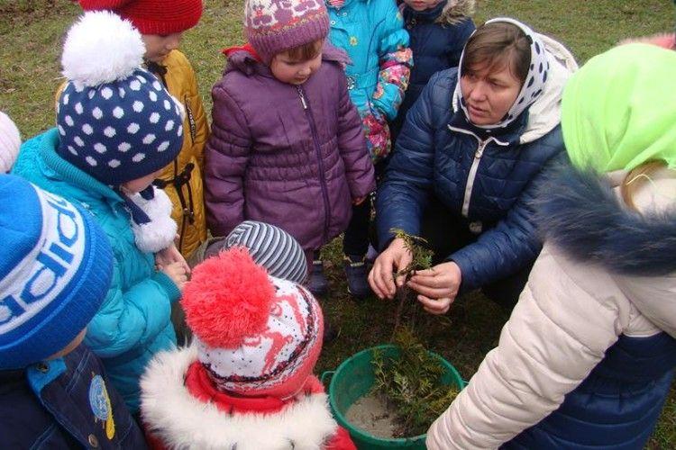 На Волині дітлахи з «Берізки» висаджували самшит, туї, барбарис та ялівець (фото)