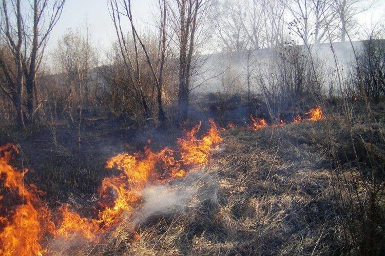 Штрафи збільшують: волинян за спалення трави битимуть гривнею