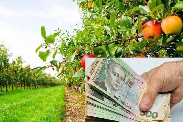 13 волинських садівничих підприємств отримали понад 22 мільйони гривень