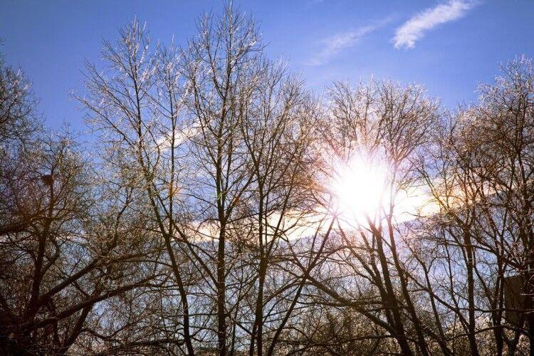 На вихідні передають теплу весняну погоду без дощів і снігу