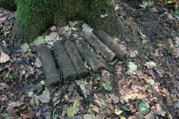 У Луцькому районі грибник натрапив на купу снарядів