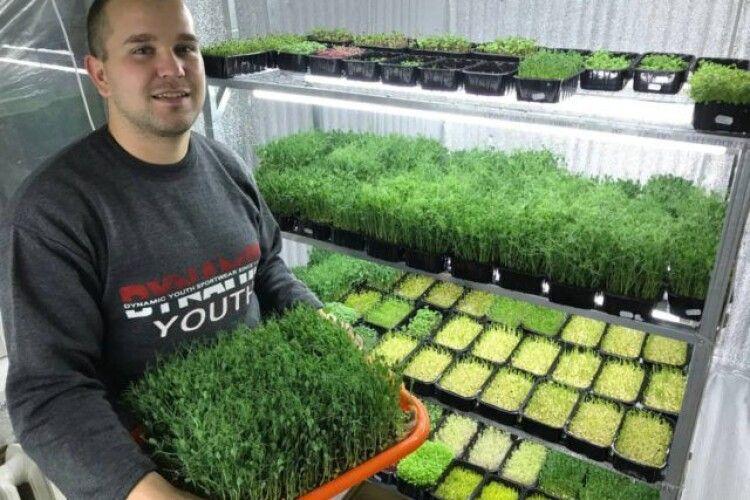 Волинянин сам вирощує і продає в соцмережах зелень мікрогрін (Фото)