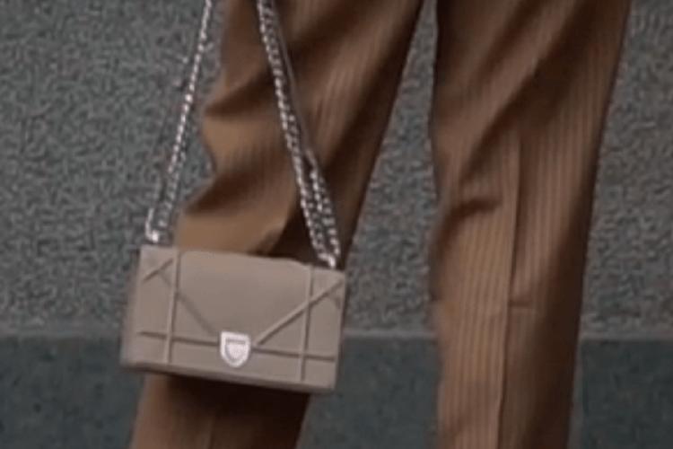 «Слуга народу» прийшла у Верховну Раду зі сумочкою за 62 тисячі гривень
