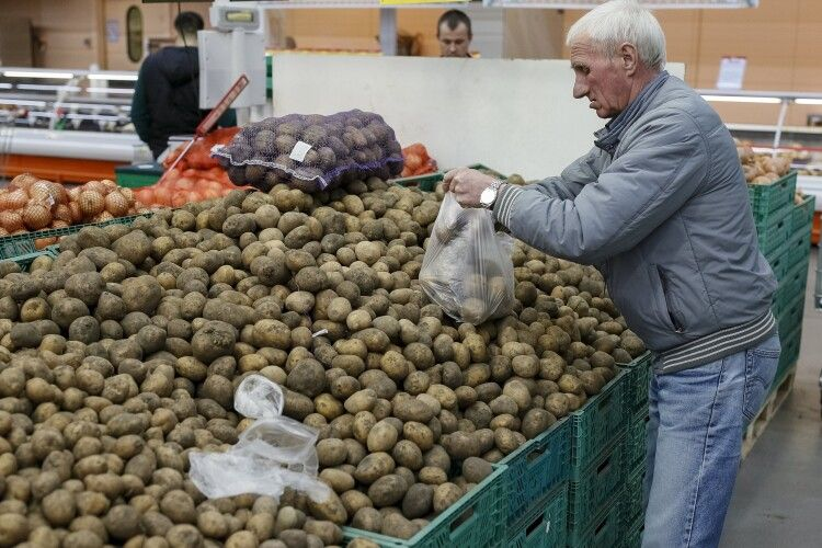 Україна почала імпортувати дешеву польську картоплю