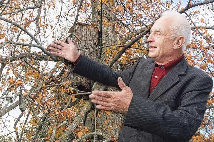 Виліздрабиною нахутірський дуб— іможеш дзвонити помобільному куди хочеш