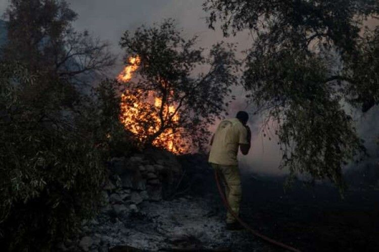 Українських туристів масово евакуюють з Туреччини через лісові пожежі