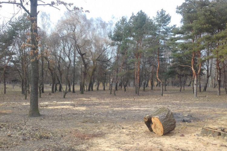 Лучани вимагають припинити приватну забудову парку 900–річчя Луцька