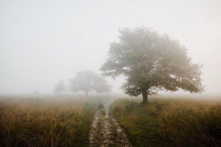Погода на вівторок, 31 серпня: останній день літа не побалує волинян теплом