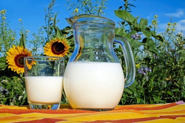 Україна планує відмовитися від імпорту молочної продукції