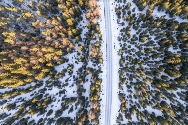 Перший сніг не за горами: чим дивуватиме жовтень