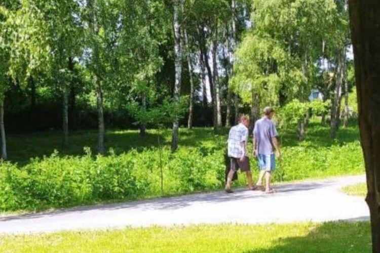 На Волині двоє чоловіків вкрали в парку деревце