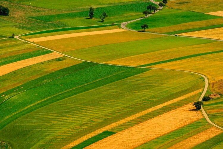 На Волині особливо цінні землі вартістю близько півмільярда гривень повернули державі