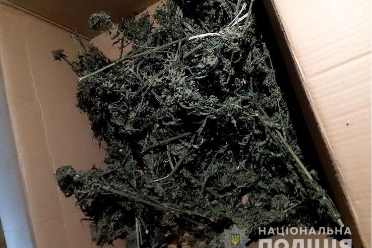 39-річний волинянин зберігав вдома ящик із марихуаною