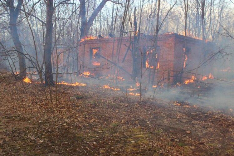 На Поліссі почали евакуацію жителів охоплених лісовими пожежами сіл
