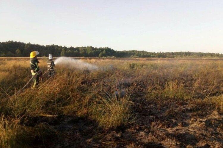 На Волині горіло більше 2 гектарів трави та чагарників