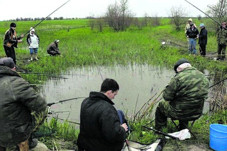В траві зеленій квакають – Сміються жаби всі: Рибалок— ціла армія, В ставку— два карасі!