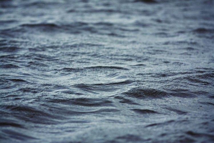 У Хріниках втопився волинянин, батько трьох маленьких дітей