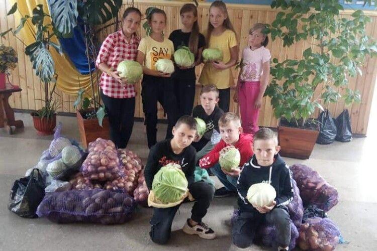 Жителі Сошичного зібрали картоплю й овочі для  обласного госпіталю ветеранів