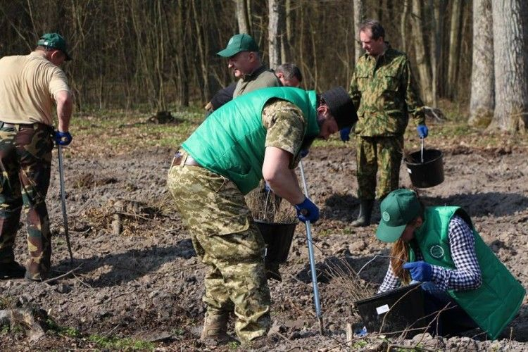 Митрополит Луцький і Волинський вбрався у камуфляж і заходився садити дуби (фото)