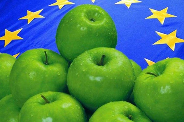 Українськими яблуками смакують уЄвропі