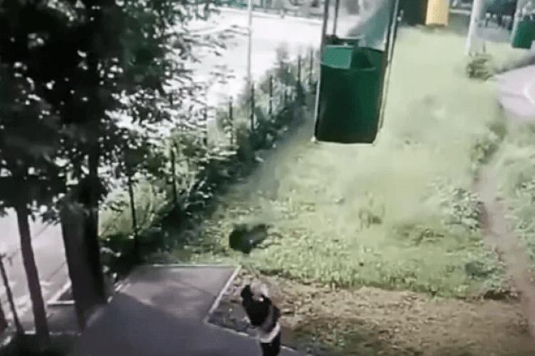 Хлопця, який випав із кабінки канатної дороги, переїхав автобус: всі подробиці (Відео 18+)