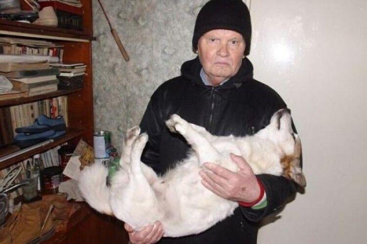 Бімка помер на руках у господаря: за вбивство собаки молодик проведе 5 років за ґратами