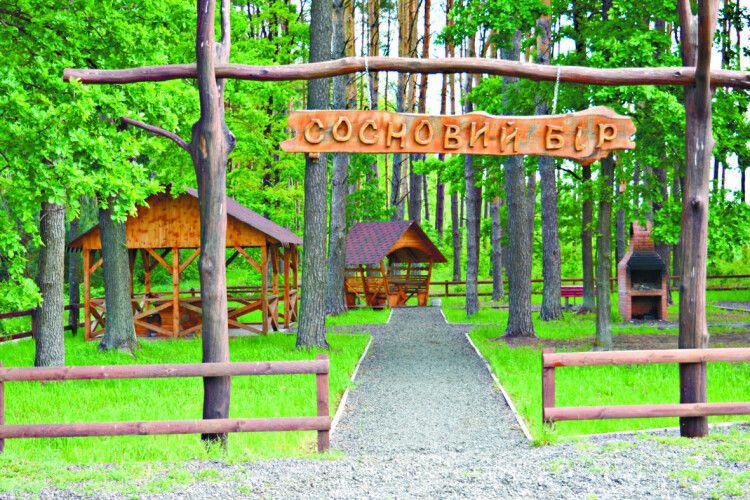 Один лісгосп— добре, два— вигідно: як любешівські лісівники працюють нагромаду