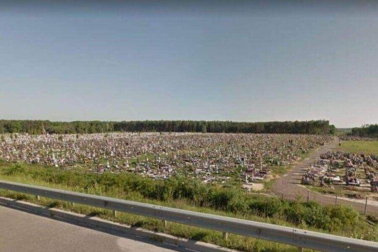 На Волині 10 га єдиного в Україні приватного лісу виріжуть, щоб... розширити цвинтар