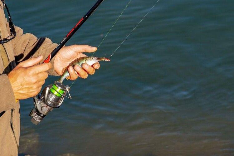 Волиняни незаконно наловили кілограм риби