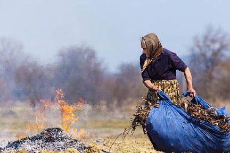 Від 3 000 гривень до 6120 гривень: волинянам доведеться платити такий штраф за спалювання листя