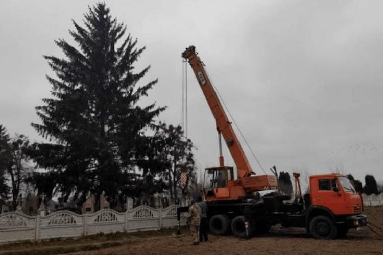 «Яка різниця?»: влада Дубно встановила у центрі міста ялинку, зрубану на кладовищі