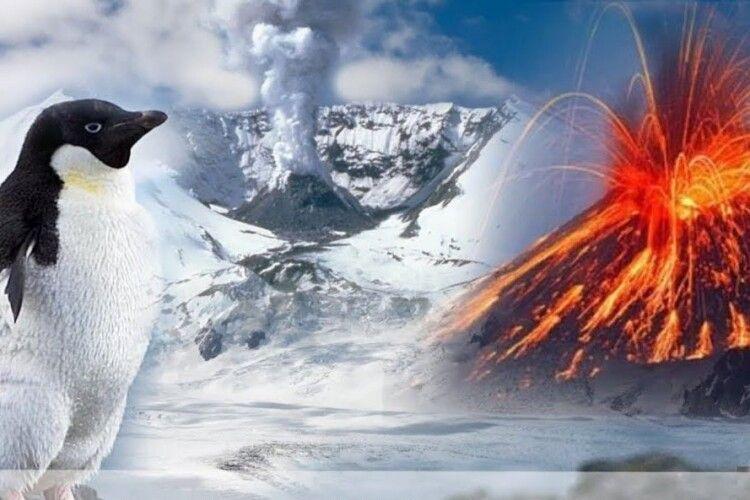 Науковців вжахнула знахідка під кригою Антарктиди