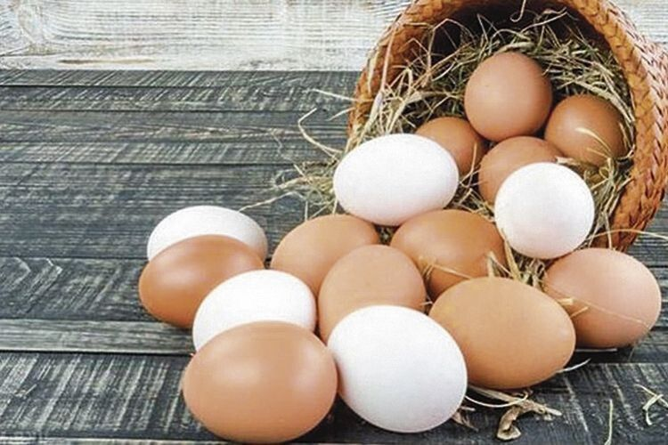Знесла курочка яєчко...