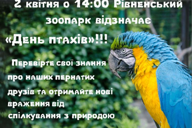 Завтра Рівненський зоопарк кличе всіх до себе – відзначити День птахів