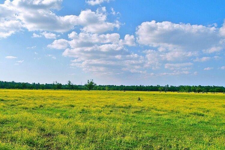 Волиняни сплатили до місцевих бюджетів майже 240 мільйонів гривень плати за землю