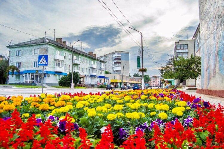 Більше ста тисяч штук квітів висадили у Нововолинську