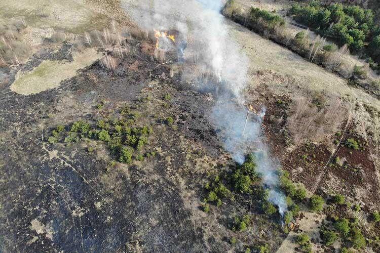 Волиняни так активно знищують сухостій, що рятувальники мусили зняти агітаційний ролик. Добірка ранкових вражень