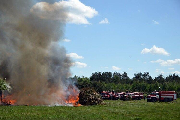 На Камінь-Каширщині учора локалізували 5 пожеж у лісі