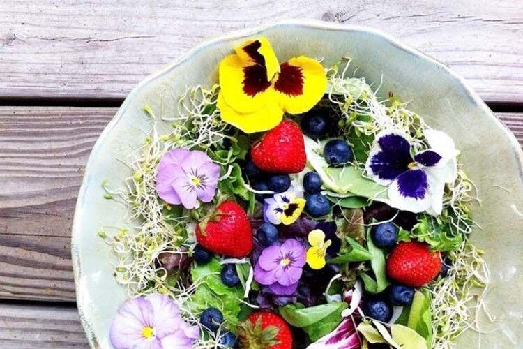Приготуйте страви із квітів: втіха нелише для очей, ай для шлунка