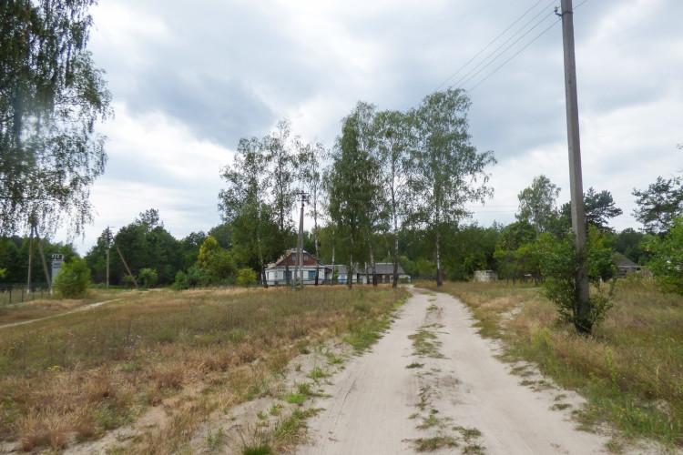 Село Власюки.