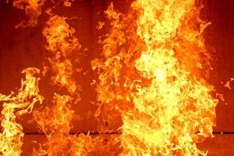 У домі луцької зоозахисниці сталась пожежа: загинули тварини