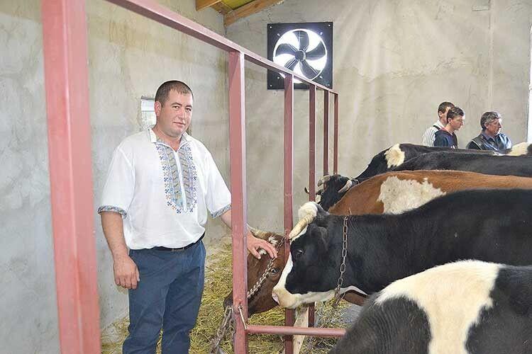 Атовець іздружиною заснували молочну ферму