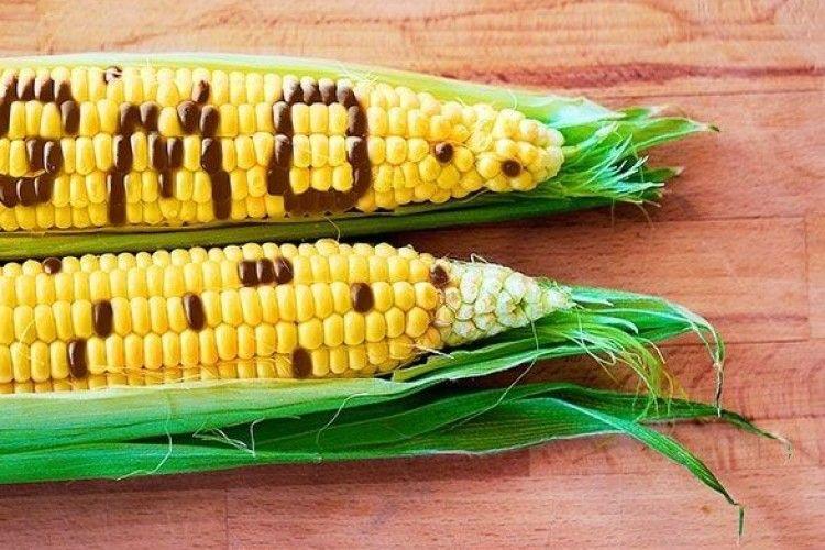 В Україні різко зросла кількість генетично модифікованих продуктів харчування