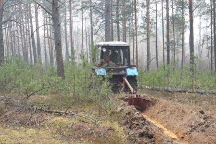 Вогнеборці ліквідували кілька лісових пожеж на Житомирщині