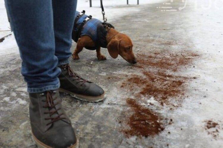 На Львівщині посипають доріжки кавовою гущею