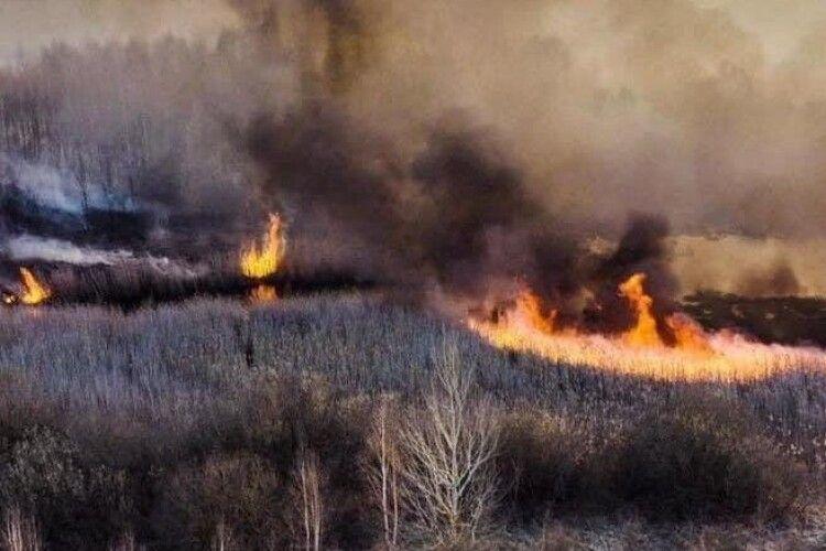 Володимир Ар'єв: «Зеленський має не ховати голову в пісок, а негайно скликати РНБО через екологічну катастрофу»