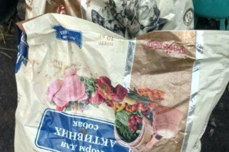 Анонімні благодійники обдарували кормом обездолених луцьких псів